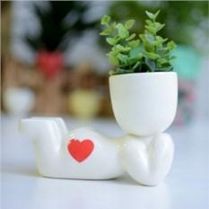 Набор для выращивания Eco Мечтатель с сердечком