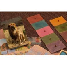 Обложка для паспорта/автодокументов Лев в Африке