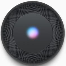 Портативная акустика Apple Home Pod Space Gray
