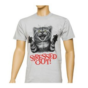 Футболка Stressed out cat