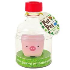 Набор для выращивания клевера Pet Pet Поросенок