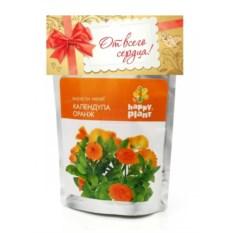 Набор для выращивания Happy Plant Календула оранж