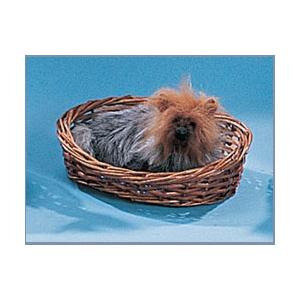 Модель «Собака Йоркшир»