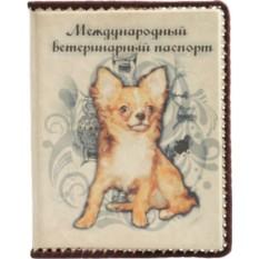 Обложка для ветеринарного паспорта Чихуахуа