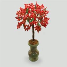 Дерево из коралла Коралловое танго