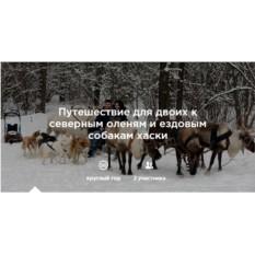 Экскурсия к северным оленям и  хаски для 2 взрослых