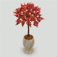 Дерево из коралла Запах моря