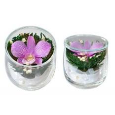Цветы в стекле. Композиция из натуральной орхидеи