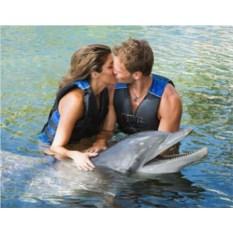 Романтическое свидание «Райский сад»
