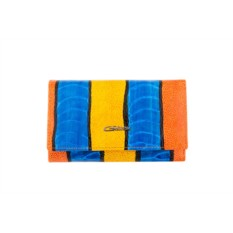 Женский цветной кожаный кошелек G.Ferretti