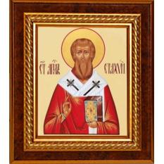 Стахий Святой апостол, епископ Византийский. Икона, холст