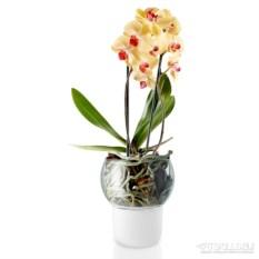Белый горшок для орхидеи с функцией самополива d15 см