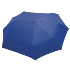 Синий зонт для двоих