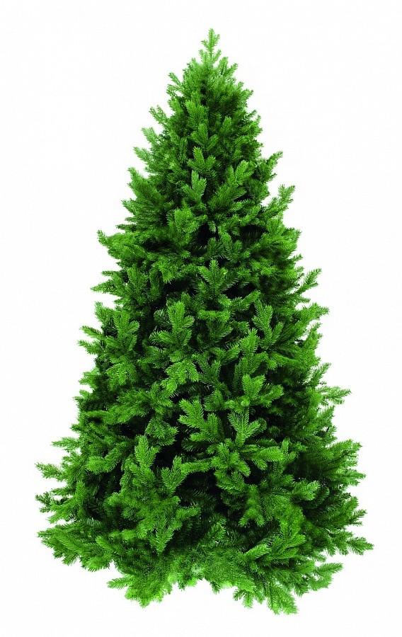 Ель Триумф Царская, зеленая. с лампочками, 185 см