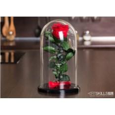 Роза в колбе «Для любимой»