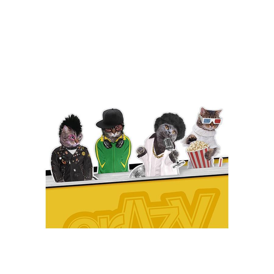 Набор магнитных закладок Crazy Cats