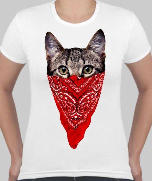 Женская футболка Кот в платке