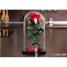 Роза в колбе «Для красавицы от чудовища»