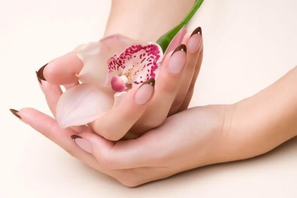 Сертификат Моделирование ногтей в стиле Цветной Френч