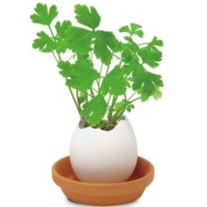 Набор для выращивания Eggling Итальянская петрушка