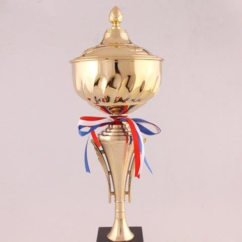 Кубок Лучший в профессии