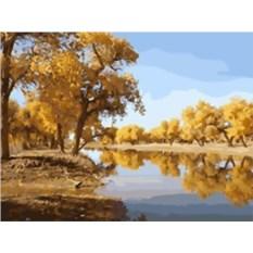 Картина по номерам 40х50см Осенний пейзаж
