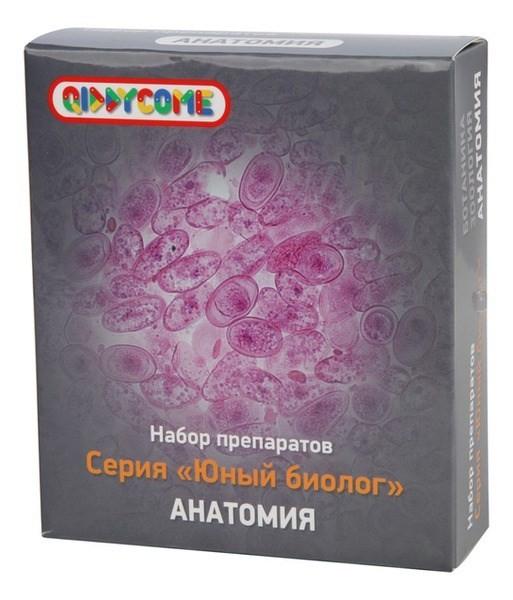 Набор микропрепаратов для детского микроскопа Анатомия