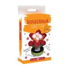 Набор для выращивания Волшебные кристаллы Красный цветок