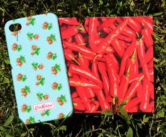 Чехол для IPhone 4/4s Amazing Flowers