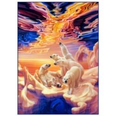 Картина-раскраска по номерам Белые медведи