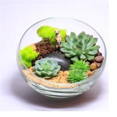 """Сад в стекле """"Хранитель пустыни"""""""