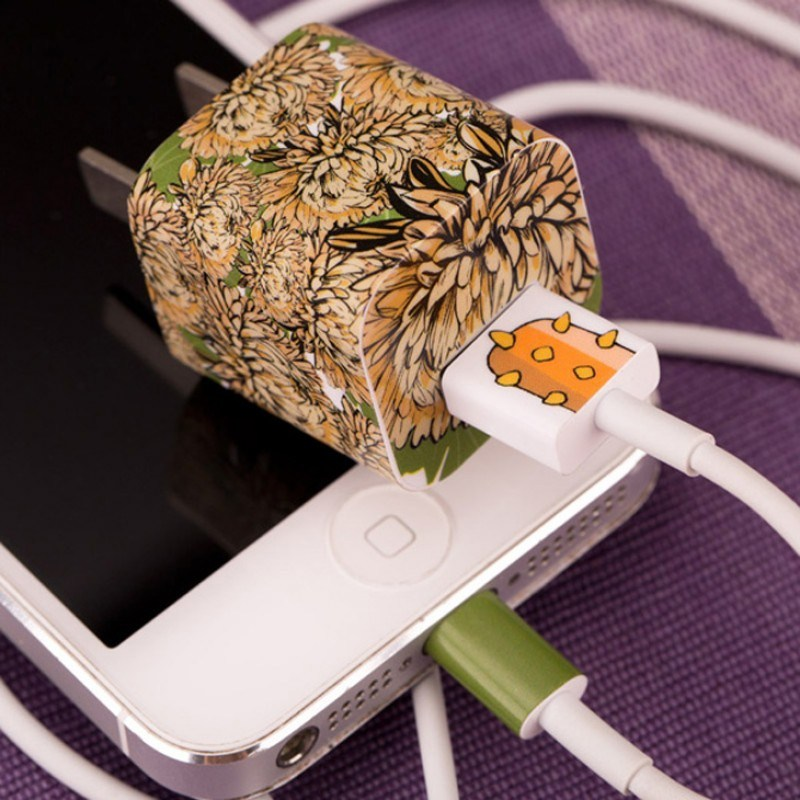 Наклейка для зарядного устройства Apple Астры