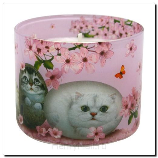 Аромосвеча с кошками в упаковке «Цветы вишни»