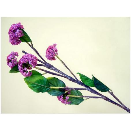 Цветок декоративный фиолетовый