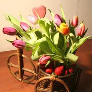 Корзина с фруктами и цветами «Самый хороший день»