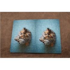 Кожаная обложка для паспорта Котёнок на голубом