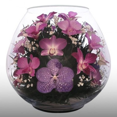 Композиция из орхидей