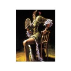 Картины по номерам «Танец страсти»
