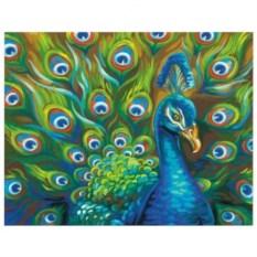 Картина-раскраска по номерам на холсте Павлин