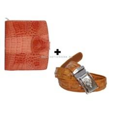 Женский кошелек и ремень из натурального крокодила