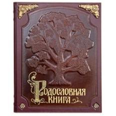 Родословная книга С бронзовыми накладками