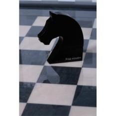 Черная флешка Ход конем