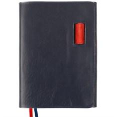 Синий недатированный ежедневник Control