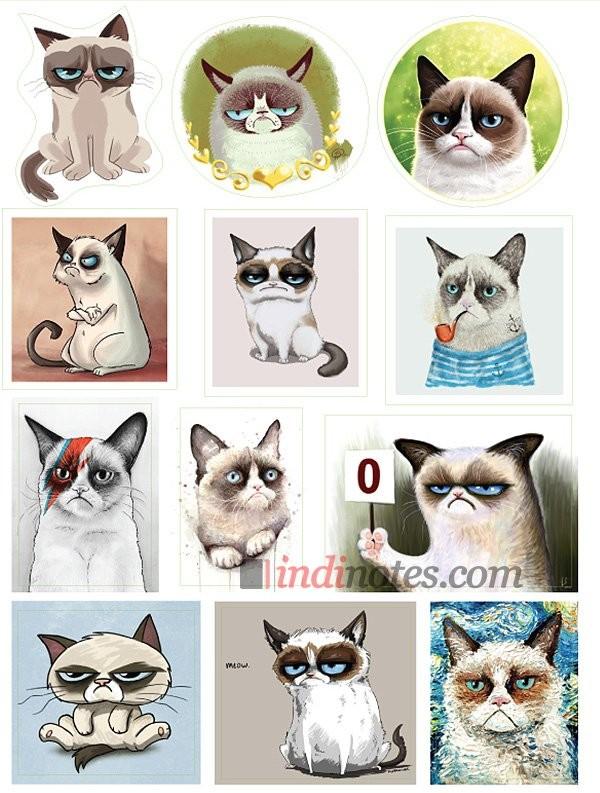 Лист виниловых наклеек Сердитый кот