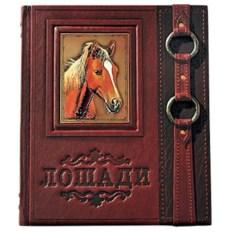 Подарочная книга «Лошади. Новая Энциклопедия»