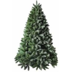 Елка Colorado Pine