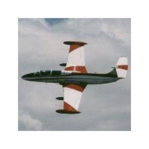 Высший пилотаж на L-29